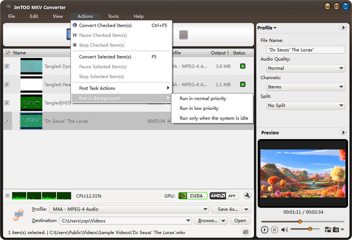 ImTOO MKV Converter Screenshot